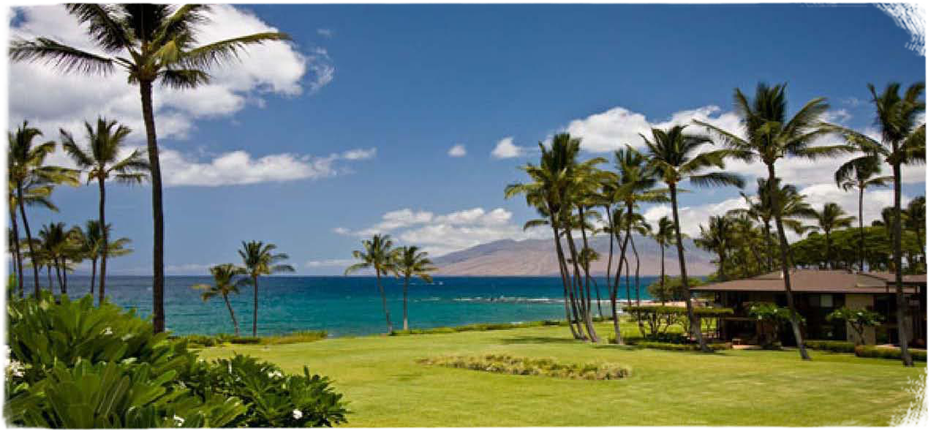 hawaii ocean view