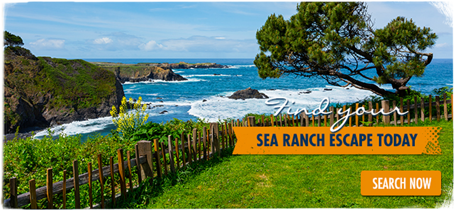 escape to sea ranch
